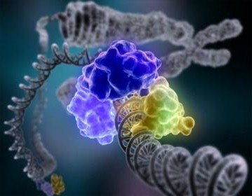 Thoughts are Encoded in DNA